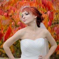 Яркие цвета :: Дмитрий Фотограф
