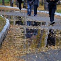 Осень :: Таня Фиалка