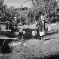 Дмитрий Леванов - Бабушка с ведрами