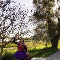 Лиза в костюме волшебницы с собакой. :: Елена Мартынова