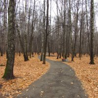 Последний день октября-2014 - IMG_3953 :: Андрей Лукьянов