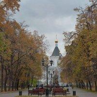 Пасмурная осень в Москве :: Евгений Кривошеев