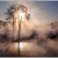 Солнце на лето, зима на мороз...... :: Olenka