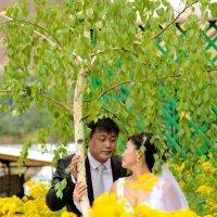Эх лето, ах свадьба :: Дмитрий Фотограф