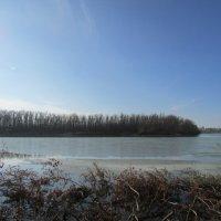 Река Иртыш :: раиса Орловская