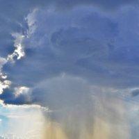 дождь :: Наталья Золотарева