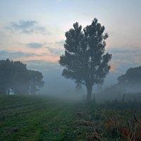 Синий туман :: Александр Бойко