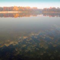 В воду смотрят облака... :: Сергей *