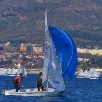 поймать ветер :: Валерий Дворников