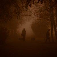 туман :: Anrijs Slišāns