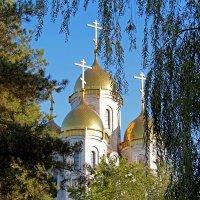 Золотые купола :: Dr. Olver  ( ОлегЪ )