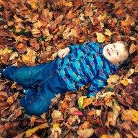 На ковре из желтых листьев :: Елена Полковникова