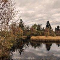 Осень на болоте :: Irina Schumacher