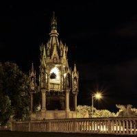Ночная Женева.Мавзолей герцога Карла Брауншвейгского. :: Олег Чернецов