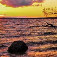 Вид с берега :: Андрей Куприянов