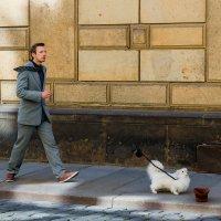 Мим с собачкой :: Александр Лядов