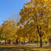 Осенний город :: Denis Aksenov