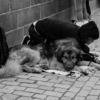 Подайте Христа ради! :: Александр Лядов