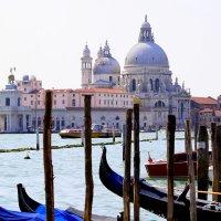 Venice :: Рената Мурзагильдина
