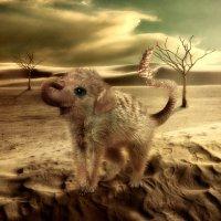 Необычное животное :: Inga Керрен