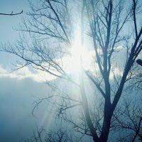 Солнце :: Надюшка Михальчишина