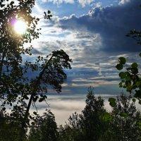 Туман над озером :: Владимир Михайлович Дадочкин