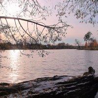 Бескрайний розовый закат. :: ALISA LISA