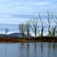 Уж небо осенью дышало, уж реже солнышко блистало... :: Евгений Юрков
