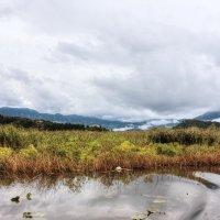 На озере :: ирина )))