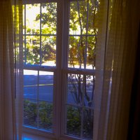 Осень за окном :: Яков Геллер
