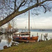 Озерный уголок... :: АндрЭо ПапандрЭо
