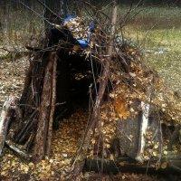 И этот дом, который построил Джек, но в лесу... :: Ольга Кривых