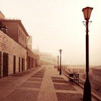 Ноябрьская...туманная :: Александр | Матвей БЕЛЫЙ