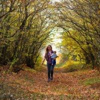 В гармонии с лесом... :: Ольга Ивченко