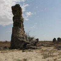 каменный лес :: Nadin Artemjeva