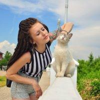 Кошечки :: Мария Панькина