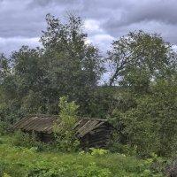 Старая банька :: Viktor Pjankov