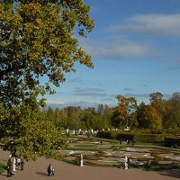 Прогулка в парке :: Валентина Харламова