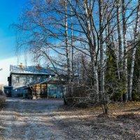 Осень в Вологодской глубинке :: Борис Устюжанин
