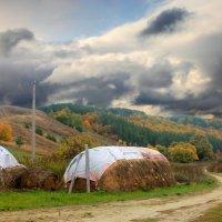 Буря! Скоро грянет буря! :: Эркин Ташматов
