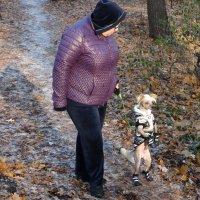 Эволюция собаки в человека :: Svetlana27