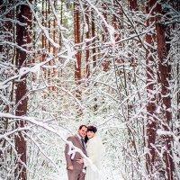 В снежном лесу :: Анастасия Таршина