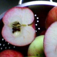 Яблоки и их семена :: Миша Любчик