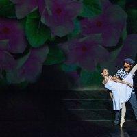 """балет """"Барышня и Хулиган"""" :: Елена Зимина"""