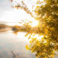 Осенний РАсвет :: Алексей Матусевич