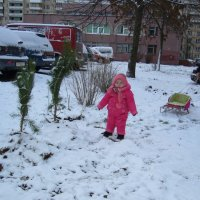 первый снег :: Геннадий Евтушенко