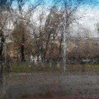 Просто на телефон из машины :: Владимир Рубцов