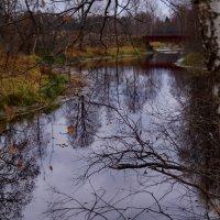 заброшенный мост... :: Ольга Cоломатина