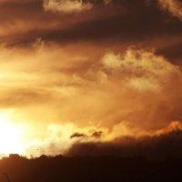 На закате осени :: Tanya Vnukova