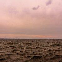 Закат в ноябре :: Алёнка Шапран